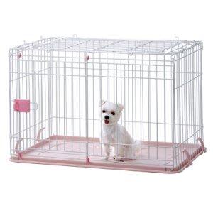 画像3: 愛犬の為に作られた「IINA ドッグルーム」