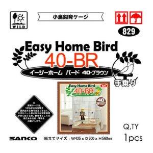 画像2: 【お取り寄せ商品】 小鳥によく合う、爽やかなカラーリング!「イージーホーム バード40BR手乗り ブラウン」
