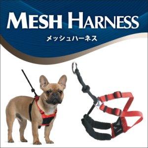 画像5: 【お取り寄せ商品】 苦しくないのに引っ張らない!「メッシュハーネスM」