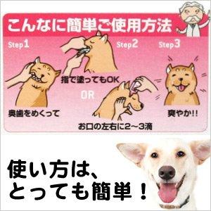 画像4: 愛犬の簡単歯みがき習慣「デンタルももちゃん 29ml」